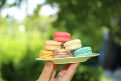 Traditional french colorful macarons.  Young woman holding the french pastry macaron on a white plate Royalty Free Stock Photo