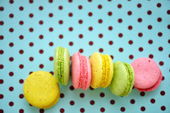 Traditional french colorful macaroons in a row on polka dots blue background Stock Photos