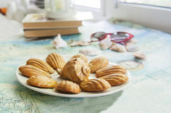 Traditional french cookies. Madeleine with conch shell Royalty Free Stock Image