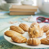 Traditional french cookies. Madeleine with conch shell Royalty Free Stock Photography