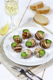 Traditional French cuisine: snails sauce Burgundy Royalty Free Stock Photo