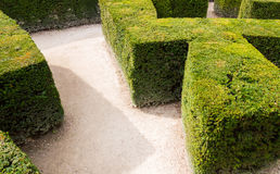 Traditional french garden labyrinth Royalty Free Stock Photo