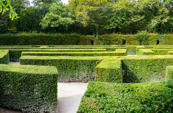 Traditional french garden labyrinth Stock Photo