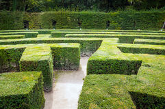 Traditional french garden labyrinth Royalty Free Stock Photos