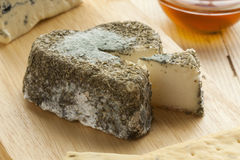 Traditional French goats cheese Stock Image