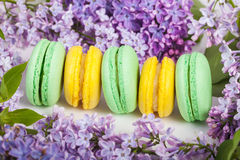 Traditional french macaroons Royalty Free Stock Photo