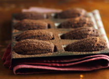 Traditional french madeleine cookies with chocolate and cocoa powder Royalty Free Stock Photography