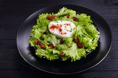 Traditional French salad Lyonnaise on plate stock images