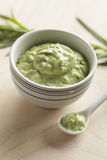 Traditional French tarragon mustard Stock Photography