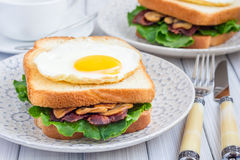 Traditional french toasted sandwich Croque madame Royalty Free Stock Image