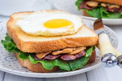 Traditional french toasted sandwich Croque madame Stock Photos