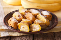 Traditional fried bananas sprinkled with powdered sugar close-up Stock Images