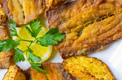 Traditional fried herrings Royalty Free Stock Image