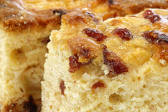 traditional Frisian glazed cranberry cake Stock Image