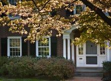 Traditional front door. Stock Photo