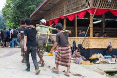 Traditional funeral in Tana Toraja Royalty Free Stock Photos