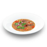 Traditional georgian hot tasty soup kharcho Royalty Free Stock Photos