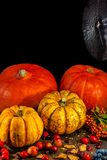 Traditional German Autumn pumpkins, berries, nuts and a spiderweb as still-life. Closeup, details, Autumn theme stock photos