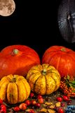 Traditional German Autumn pumpkins, berries, nuts, spiderweb and. Full bloody moon as still-life, closeup, details, Autumn theme stock image