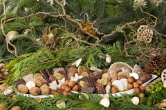 Traditional German Christmas cookies on display. Elaborate display of traditional German christmas cookies, such as Aachener Printen, Marzipankartoffeln Stock Images