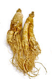 Traditional Ginseng Herb 01 Royalty Free Stock Images