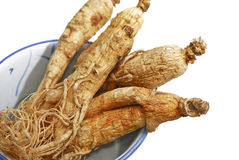 Traditional Ginseng Herb 02 Royalty Free Stock Images