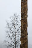 Traditional Gitxsan totem poles with lone tree behind Stock Image