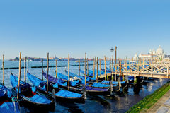 Traditional Gondolas moored by Saint Mark square Royalty Free Stock Image