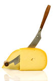 Traditional Gouda cheese with a cheese cutter Royalty Free Stock Image