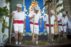 Traditional grape stomp in Sherry. JEREZ DE LA FRONTERA, SPAIN-SEPTEMBER 10: Traditional grape stomp in Jerez de la frontera, inaugural ceremony of the festival Stock Photos