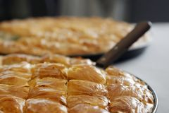 Cheese pie close up pieces. Traditional greek Cheese pie close up Royalty Free Stock Photo