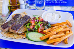Traditional greek food. On the plate Stock Photography
