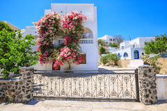 Traditional Greek house with bougainvillea flowers in Thira, Santorini, Greece Stock Photography