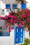 Traditional greek house with flowers in Oia village on Santorini island, Greece Stock Photography