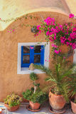 Traditional greek house with flowers in Oia village on Santorini island, Greece Royalty Free Stock Photo