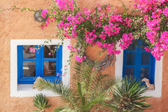 Traditional greek house with flowers in Oia village on Santorini island, Greece. Traditional greek house with flowers in famous Oia village on Santorini island Stock Photo