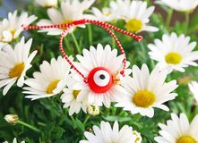 Traditional greek March bracelet with evil eye on blooming daisy flowers stock image