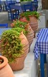 Traditional greek taverna. Rustic Greek taverna with beautiful terracotta planters stock image