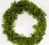 Traditional green Christmas wreath, white background royalty free stock image