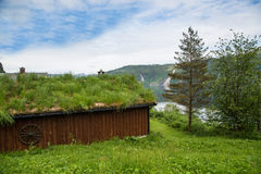Traditional Green Roof of Norway, Scandinavia Stock Images