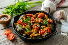 Traditional green, turkish and georgian food dolma. On rustic wood background stock images