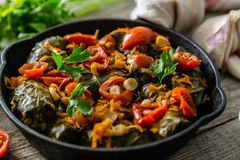 Traditional green, turkish and georgian food dolma. On rustic wood background stock photos