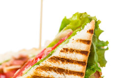 Traditional grilled club sandwich with chicken. Royalty Free Stock Photo