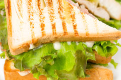 Traditional grilled club sandwich with chicken. Stock Photos