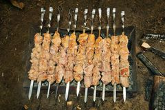 Traditional grilled meat. Meat and skewers on the charcoal grill Stock Photography