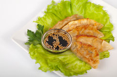 Traditional gyoza Royalty Free Stock Images