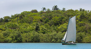 Traditional handmade sail boat in the amazon of Brazil. Stock Image