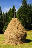 Traditional hay stack in romania Stock Photo