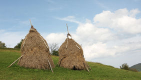 Traditional haystacks Royalty Free Stock Photography