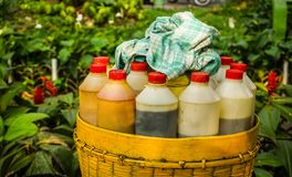 Traditional herb drink or jamu from Indonesia with vintage style bottle on bamboo basket in indonesia stock photos